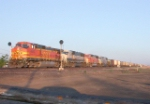 NB coal train just met with WB California Zephyr